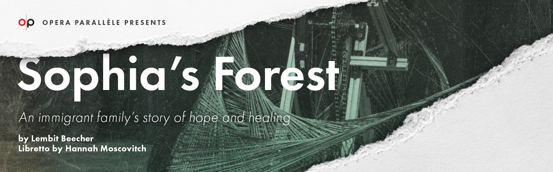 Lembit Beecher's Sophia's Forest